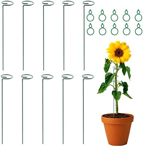 OLANZH Plant Stem Support Gifts Cage 10Pcs New sales Stakes