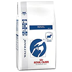 Dry pet food Food for dog Food from ROYAL CANIN