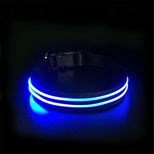 ZZCR Collar para mascotas con USB, cómodo collar de seguridad con emisión de luz para perros pequeños, medianos y pequeños, adecuado para gatos y perros, azul, 50 cm x 2,5 cm