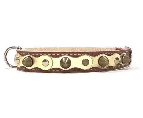 Superpipapo Hunde-Halsband, Braun Glänzend Gold Leder Handmade Design mit Nieten, Robuste Ausgefallene Qualität für Kleine und Mittelgroße Hunde, 40 cm XS-Wide: Halsumfang 25-30 cm, Breit 28mm
