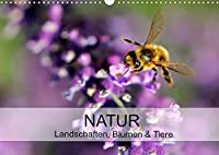 Natur Landschaften, Blumen & Tiere / Geburtstagskalender (Wandkalender 2022 DIN A3 quer): Naturkalender mit Landschaften und Makroaufnahmen (Geburtstagskalender, 14 Seiten )