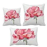 水彩画のカーネーションの花の植物 インサートのクッション・カバー/装飾贈り物がセットした家のソファ、枕を放り投げます
