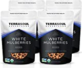 Terrasoul Superfoods Organic Sun-dried White Mulberries, 4 Lbs (4 Pack) - Low Glycemic | Naturally Sweet | Rich in Vitamin C