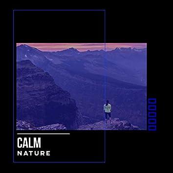 # Calm Nature