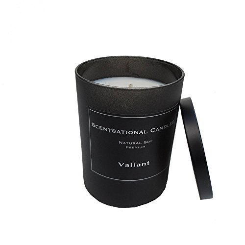Scentsational Candles Premium Soy Candle, Valiant (Man Candle)