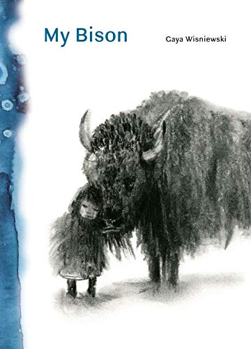 Image of My Bison