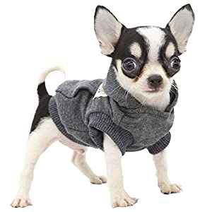 LOPHIPETS Dog Cotton Hoodies Sweatshirts for Puppy Small Dogs Chihuahua