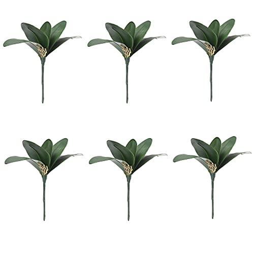 Yeekg Planta de hojas de orquídeas artificiales de color verde, falaenopsis verde artificial para arreglos de flores, decoración de bonsái de jardín (6 unidades)
