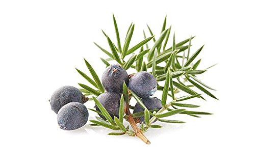 Ambrosial - Fragancias de Cade Cielo Aceite Esencial Juniperus Oxycedrus 100% Natural