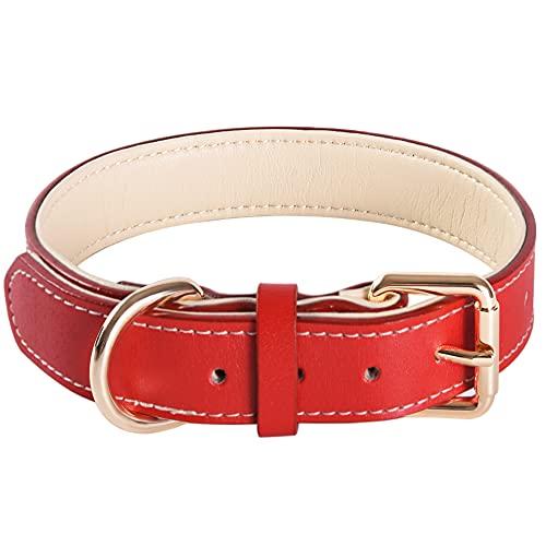 Collar ajustable de cuero suave para perros pequeños, medianos y grandes razas (M,Rojo)