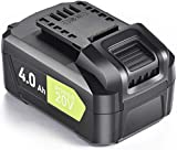 20V Lithium Battery - 4.0Ah Li-ion Battery Packs for Cordless Tools, Long Life Battery Work with SnapFresh Cordless Leaf Blower, Lithium-Ion Battery Support Fast Charging (BBT-DC40A)