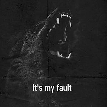 It's my fault