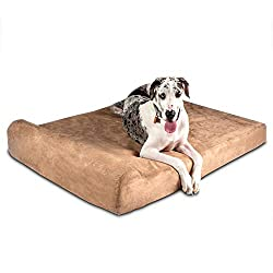7-inch Pillow Top Orthopedic Dog Bed with bolster