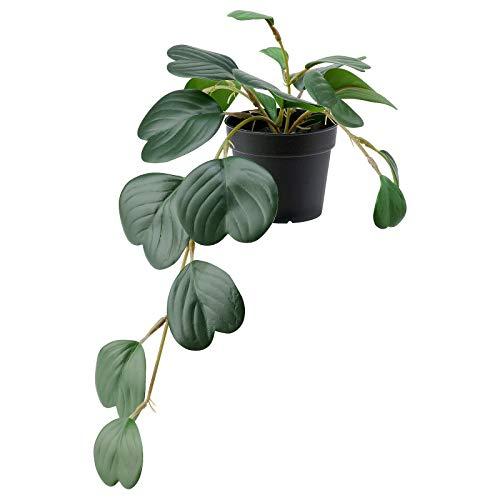 Ikea Fejka Künstliche Topfpflanze, für drinnen und draußen, zum Aufhängen, 9 cm