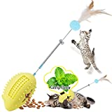 Petdexon Interactive Cat Toys, Pro 6 in 1 Catnip Toys for Indoor Cats, Rubber Cat Chew Toys, Durable Mouse Cat Feather Teaser Toys for Hairbrush Massage, Scratching, Stuffing Foods(Yellow)