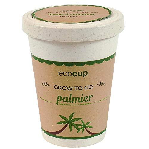 Feel Green Ecocup, Palmier Exotics, Idée Cadeau (100% Ecologique), Grow-Your-Own/Kit Prêt-à-Pousser, Plantes Dans Coffee Cup 10 x 8 cm, Produit En Autriche