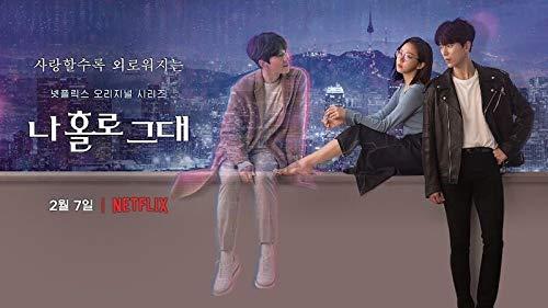 韓国ドラマ 愛しのホロ Blu-ray全話