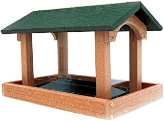 Going Greentm Tall Premier Hopper Bird Feeder