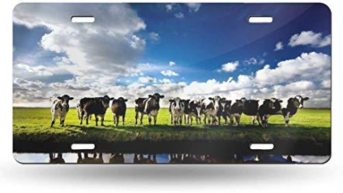 Dom576son 15,2 x 30,5 cm Nummernschild, Aluminiumschild, Riverside Dairy Herd 50 State personalisierbar, personalisierbar, für Auto/Fahrrad/Motorrad