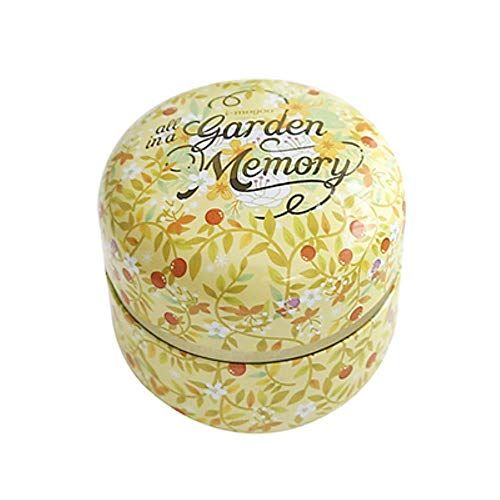 Aomerrt Travel Tea Can blik van metaal met kleine focus Mini Travel Tinplaat voor bloemen