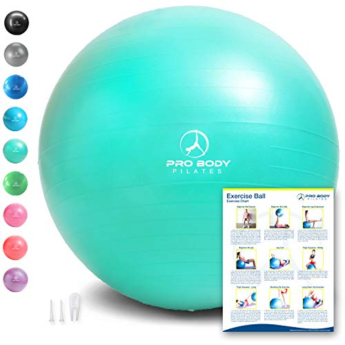 ProBody Pilates Exercise Ball - Professional Grade Anti-Burst Fitness, Balance Ball for Yoga, Birthing, Stability Gym Workout Training and Physical Therapy - Work Out Guide (Aqua (No Pump), 65 cm)