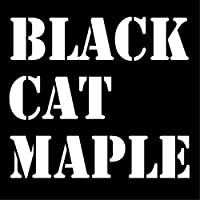 ブラックキャットメイプル BLACK CAT MAPLE 自家焙煎 self-roasted 受注後焙煎 roast by orders 豆のまま whole beans コーヒー豆 coffee beans (ホンジュラス honduras, 200g)