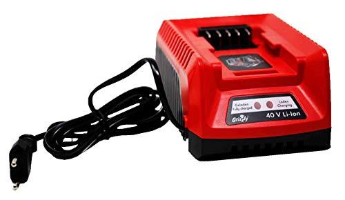 Grizzly Chargeur rapide 40 V 1,25 h compatible avec le système 40 V