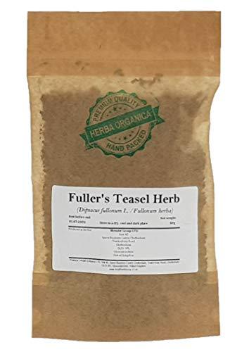 Wilde Karde Kraut / Dipsacus Fullonum L / Fuller's Teasel Herb # Herba Organica # Carde, weis Distelen, Färberkarte, Karde (50g)