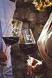 Sternefresser XL Wie war Dein Tag-Weinglas (1x 540ml Glas) von Schott Zwiesel | Made in Germany | Guter Tag, Schlechter Tag, Frag Nicht -Weinglas mit Gravur | Rotwein Weißwein - 3