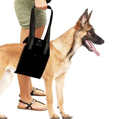 Chien Harnais pour Chien Harnais de Poitrine pour Chien Pet Rehabilitation Assist Aide au Transport pour Chien Harnais r/églable