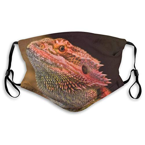 Comfortable Printed ma-sk,Lizards Animal,Windproof Facial decorations for man and woman