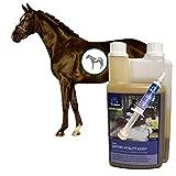 EMMA  Gastro Liquid for Horse I Set económico con levadura de Cerveza I prebiótico I Flora intestinal intacta I intestino del estómago + 1 Gastro Booster + 1 L