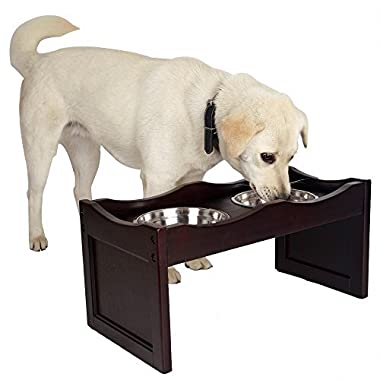 Petsfit Medium Raised Dog Bowls Elevated Stand Up Dog Bowls with 2 Stainless Steel Bowls 21  Lx10 Wx10 H