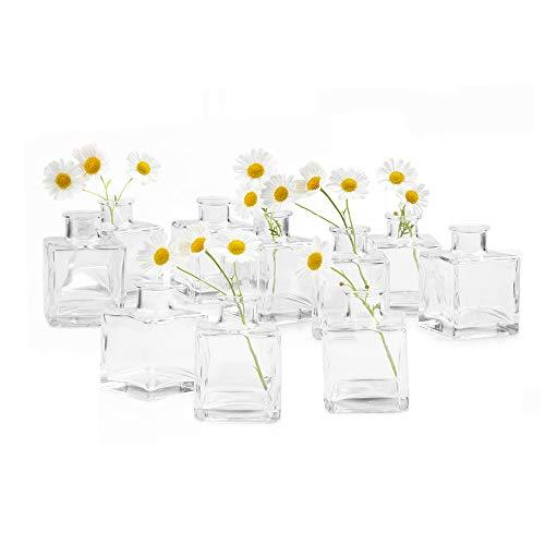 Chive - Loft, Small Glass Flower Vases, Decorative Rustic Floral Vases for Home Decor Centerpieces, Events, Single Flower Bud Vase, Vintage Look - Bulk Set (Clear Square Bulk 10)
