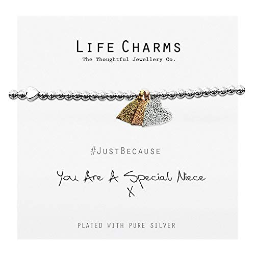 Life Charms You are A Special Niece Bracel
