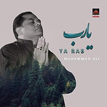 Ya Rab - Single