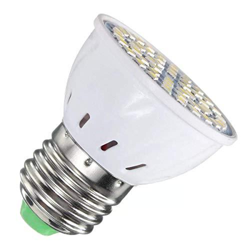 Allamp Energy Saving LED-Birnen-E27 3W 48 SMD 2835 LED warme weiße Punkt Lightting Birne AC110V AV220V - warmes Weiß E27 AC220V Dekorative Lichter