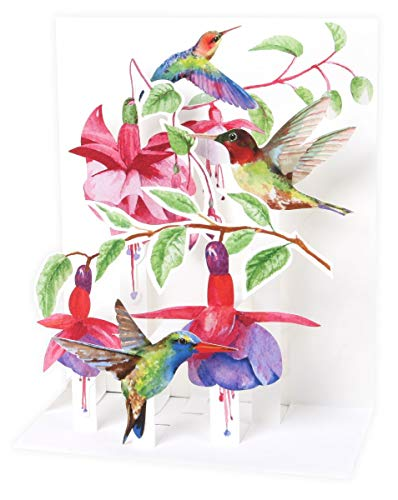 Up with Paper Pop-Up Sight 'N Sound Greeting Card - Hummingbirds