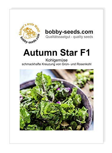 Bobby-Seeds Kohl-Samen Autumn Star F1 - Flower Sprout Early Portion