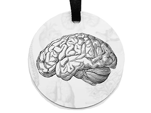 Brain Ornament Personalized Goth Home Decor Christmas Halloween Tree Aluminum or Porcelain