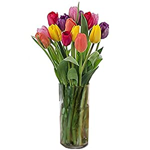 Stargazer Barn The Rainbow Bouquet Freshly Picked Colorful Tulips with Vase Included Purple, Pink, White, Red, Yellow, Orange 6 Piece Set, Flowers, 1 Count by Stargazer Barnst1fa -- Dropship