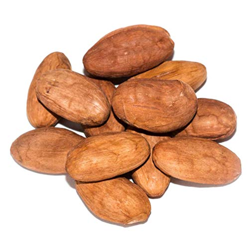 FERRY Bio-Saatgut Nicht nur Pflanzen: 17 Kakaosamen Kakaosamen für Schokolade-Nuss Theobroma Cacao