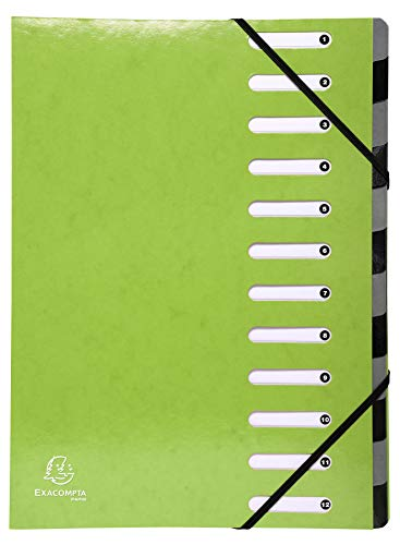 Exacompta 53923E Ordnungsmappe (Iderama Harmonika, 12 Fächer, Gummizug, beschichteter Manila-Karton für DIN A4) 1 Stück Anisgrün