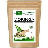 120 Moringa cápsulas 600mg o Moringa Energia Tabs 950mg - Oleifera, vegetariano, Producto de...