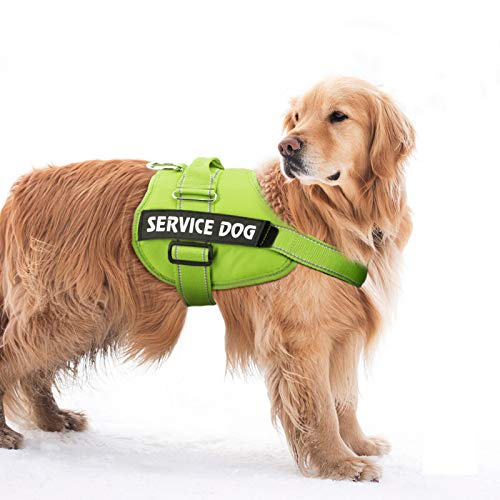 Service Dog Harness, No-Pull Pet Harness Adjustable Outdoor Comfort Dog Vest - 3M Reflective Oxford Breathable Soft Vest with Easy Control Handle for Small Medium Large Dogs Walking