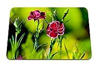 26cmx21cm マウスパッド (カーネーション花ハーブシャープネス) パターンカスタムの マウスパッド