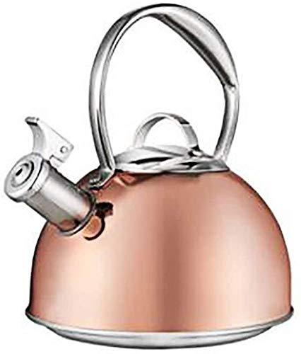 Bouilloire à thé meilleure induction moderne pintes en acier inoxydable chirurgical Whistling Teapot -Tea Pot for Stove Top lalay