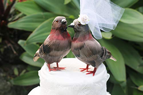 New York-Decorazione per torta a forma di piccione, motivo: 'Bride and Groom' Love-Decorazione per torta nuziale, motivo: uccelli