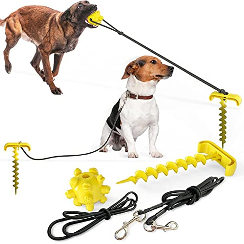 Outdoor Dog Training, Dog Oral Care To Prevent The Loss Of A Dog Toy Ball Traction, With Traction Rope Dog Nail Screwed Into The Ground, Pet Supplies Dog Tied Nails, Elastic Rope, Large Medium-size