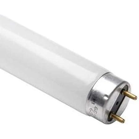 Osram Ampoule fluorescente L 36 Watts 865 - Lumière du jour